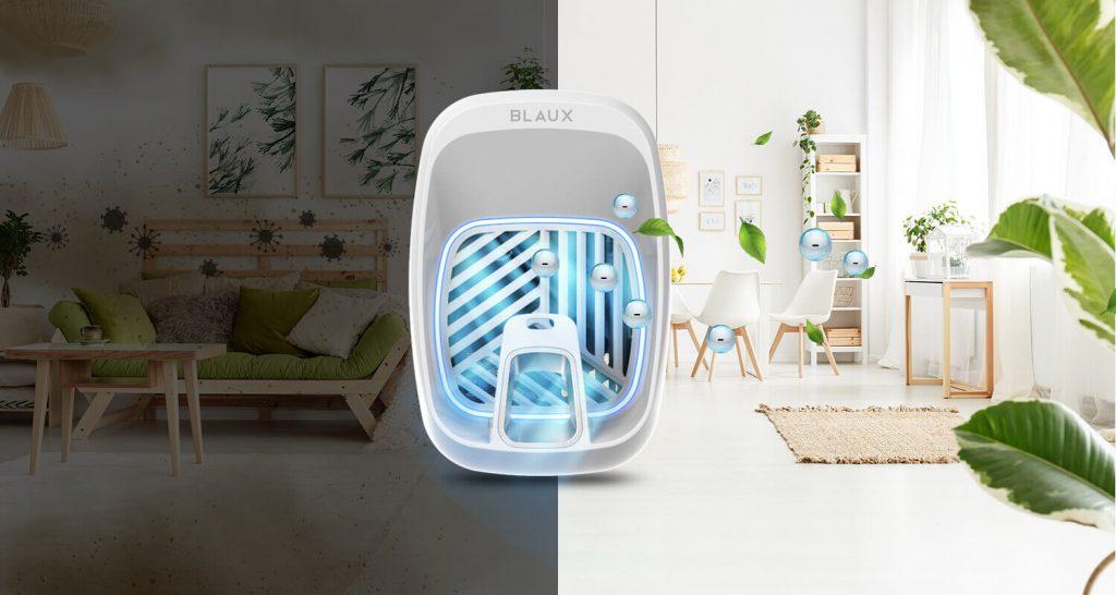 Blaux In Home